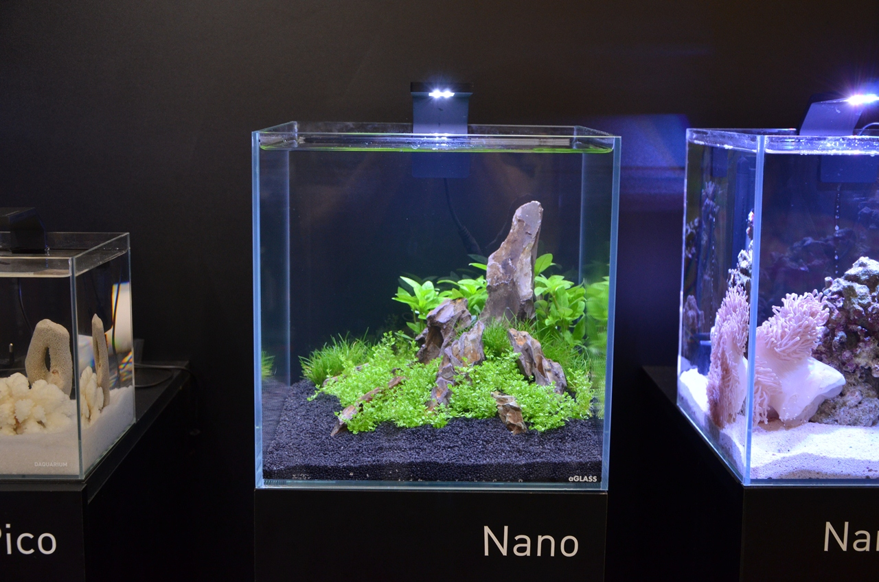Plafoniere Led Per Acquario : Aqualighter nano w u mini plafoniera a led per acquari d